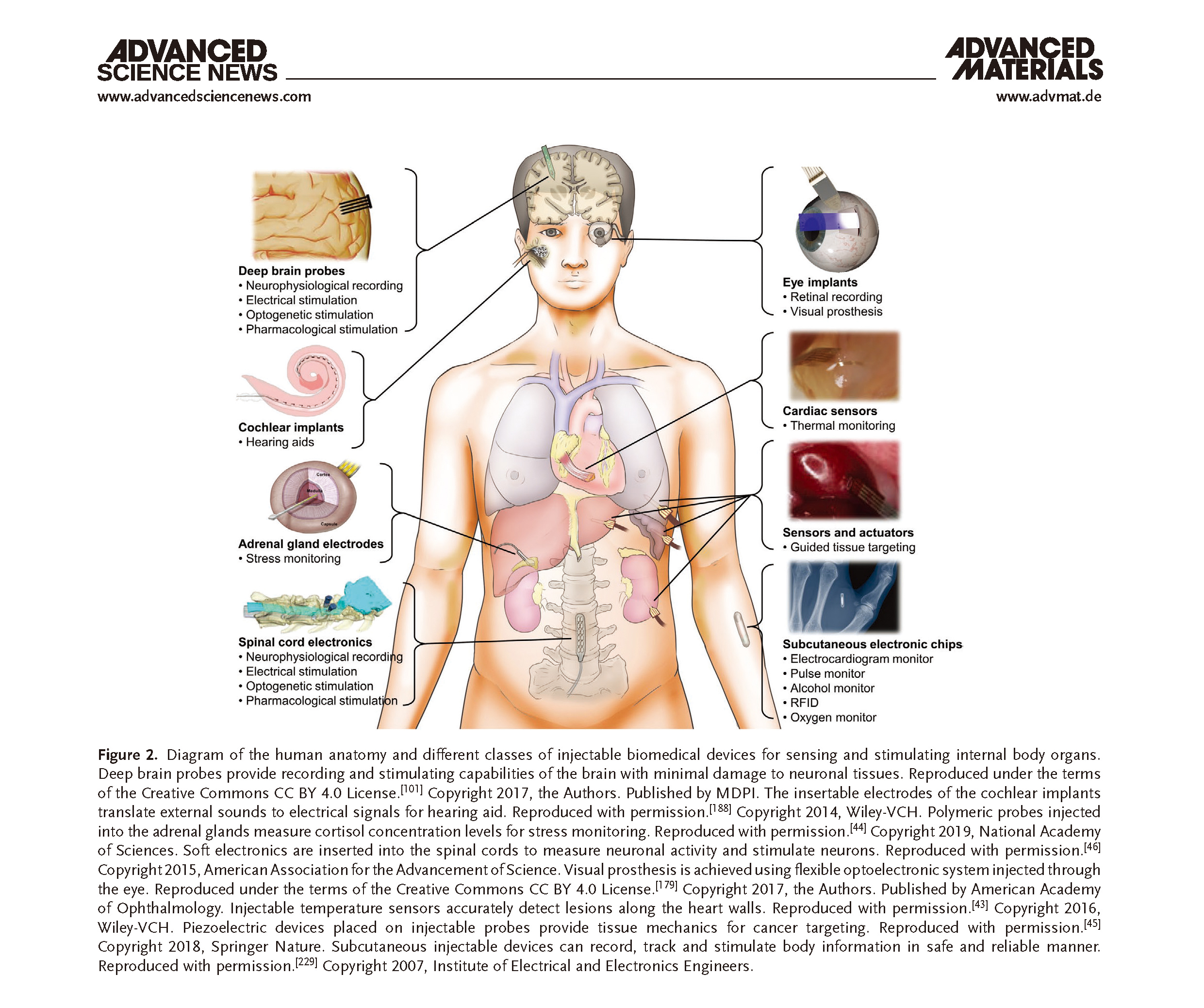 Injectable Biomedical Devices for Sensing and Stimulating Internal Body Organs